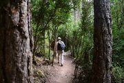 Geólogos explicarán en una excursión La Pesquera-Peña Galera de Beceite