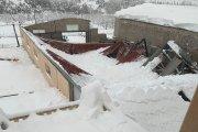 La nieve causa numerosos daños en el Bajo Aragón