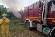 Incendio forestal junto a la Torre de Palos de Alcañiz