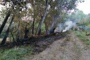 Descuidos y semillas de chopo: nuevo conato de incendio en Castelserás