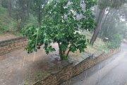 Mucha lluvia, fuerte viento en poco tiempo