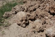 La Guardia Civil de Caspe recoge unos restos humanos aparecidos en Fuentes