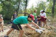 Veinte jóvenes voluntarios sanean la ribera de Calanda