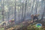 Un rayo causa un conato de incendio en los Puertos de Beceite