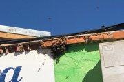 Retiran enjambres de abejas en Alcañiz y Alacón