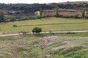 Movilización agraria y ganadera